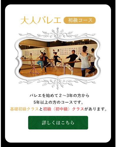 バレエを始めて2~3年の方から5年以上の方のコースです。基礎初級クラスと初級(初中級)クラスがあります。